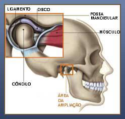 ATM-anatomia